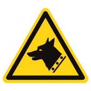 Pictogramme danger chien de garde ISO7010-W013