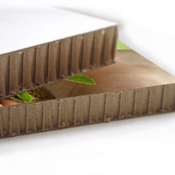 Panneau carton alvéolaire Ecoboard -1m²